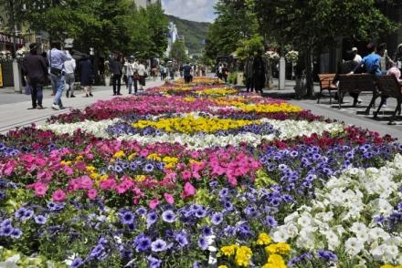 나가노 꽃 페스타 젠코지 하나가이(善光寺花回廊)